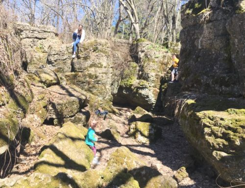 Free Family Adventures Within an Hour of Madison