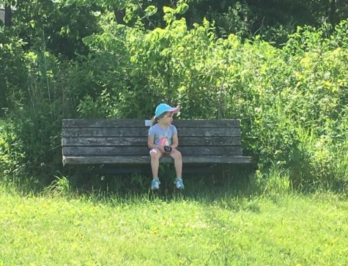 A morning adventure to Schumacher Farm Park