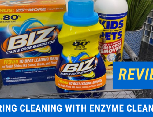 Spring Cleaning with Enzyme Cleaners