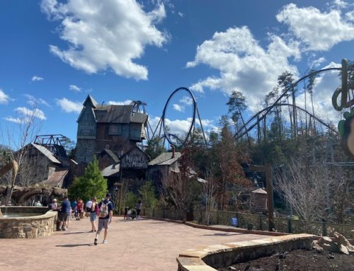 Dollywood 2021 Review
